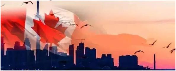 加拿大AIPP雇主担保移民:最新岗位